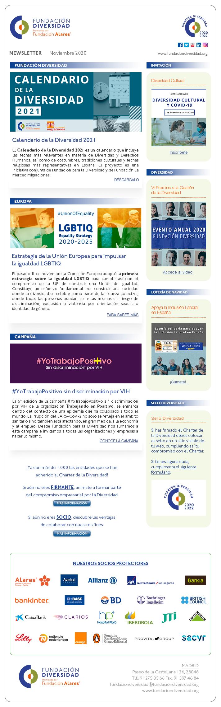 Newsletter Noviembre 2020 | Fundación Diversidad
